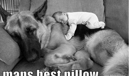 Best Pillow