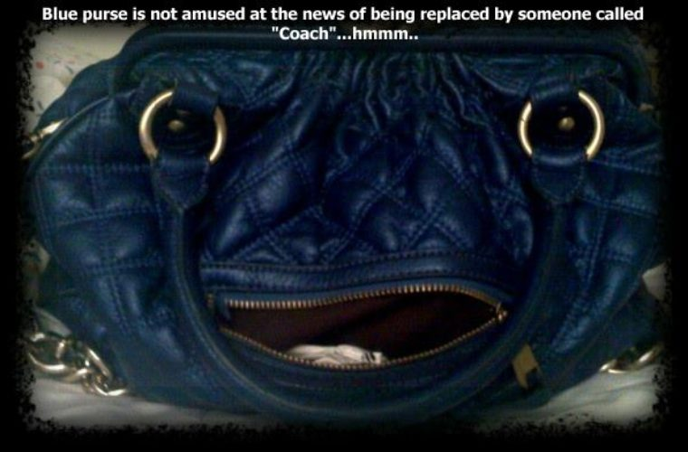 Blue Purse Funny Pictures Quotes Memes Funny Images Funny