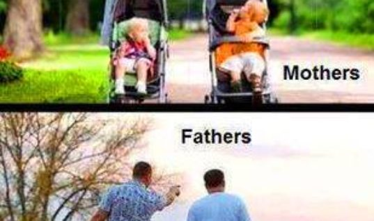 Difference between mothers and fathers