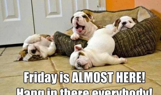 Friday is coming soon