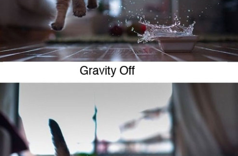 Gravity On or OFF