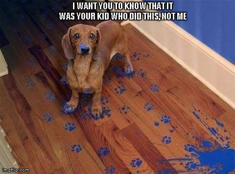 I didn't do this!