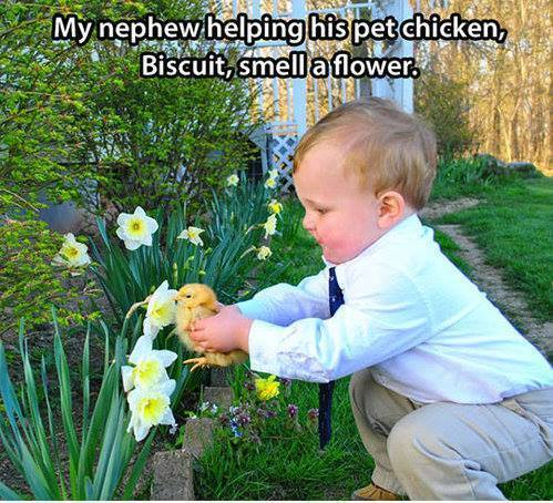 Kid and Chicken