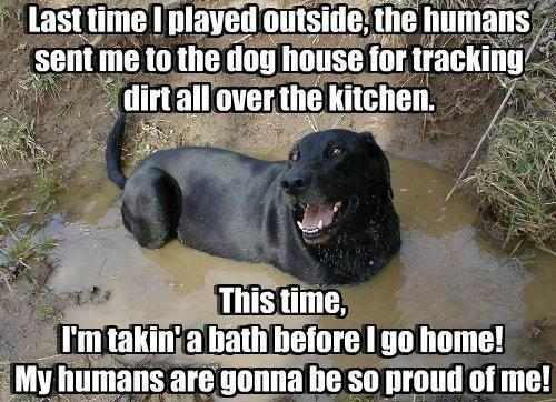 My humans are gonna be so proud of me!