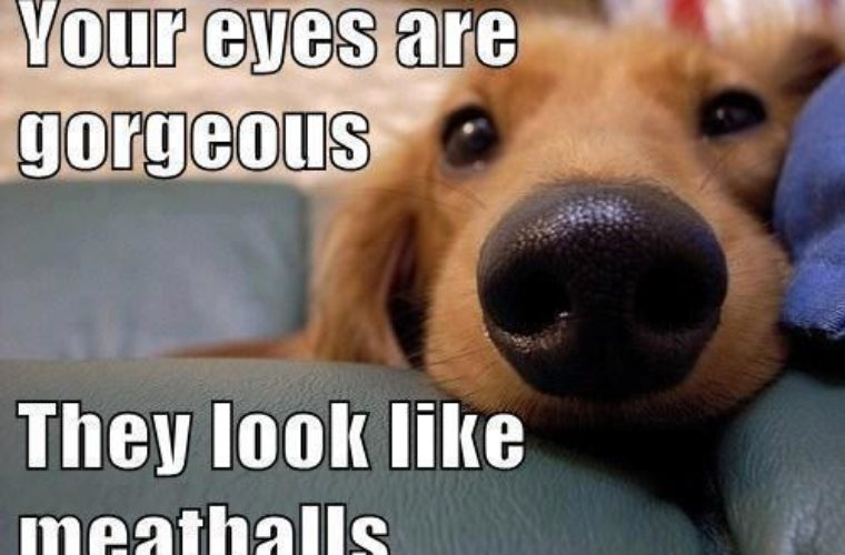 Your eyes are gorgeous