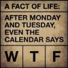 A fact of Life: