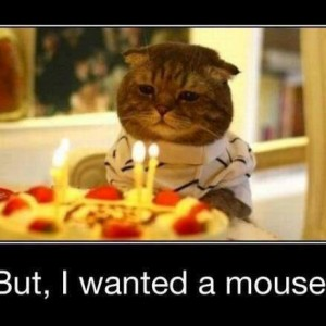 Cat's Birthday