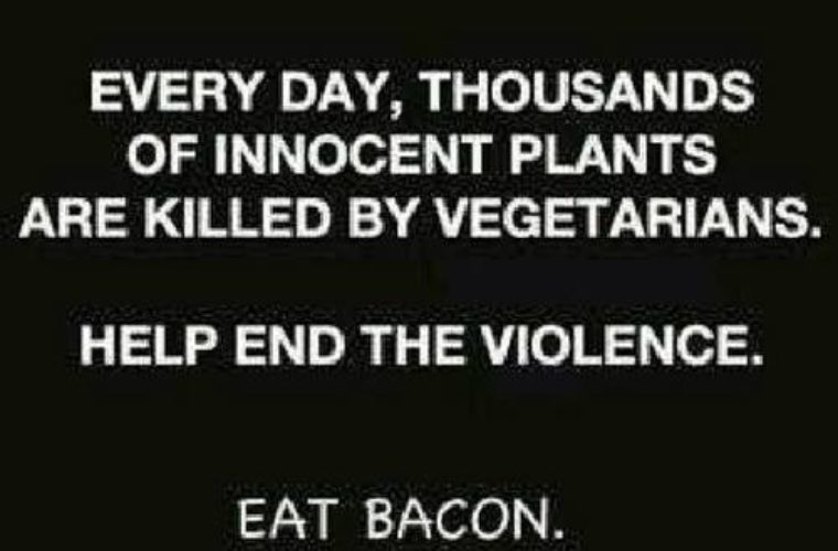 End the violence