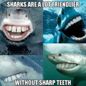 Fact about Sharks