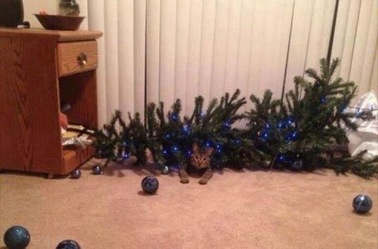 Faulty Christmas tree