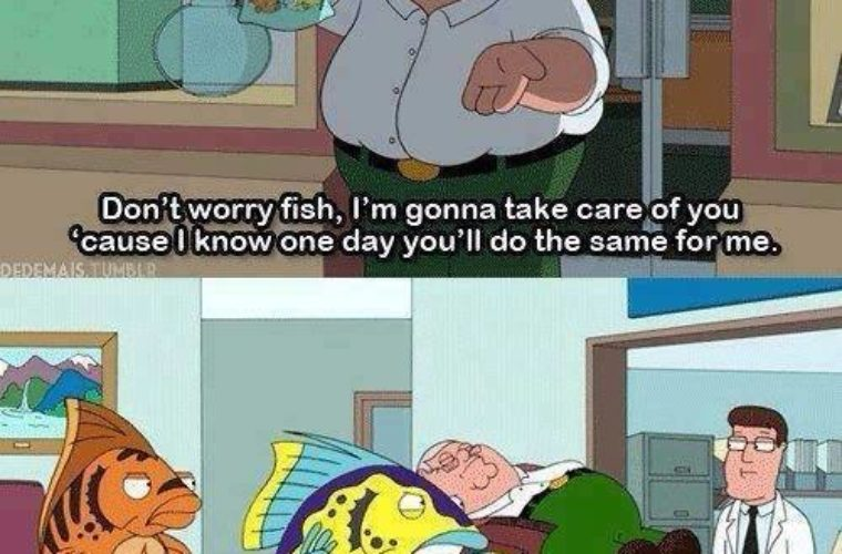 Fish grows up to take care of him