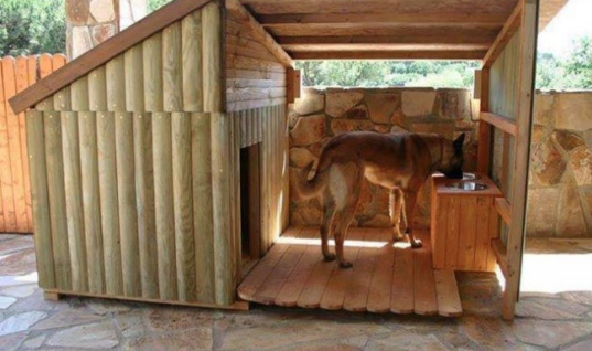 Now That's a doghouse