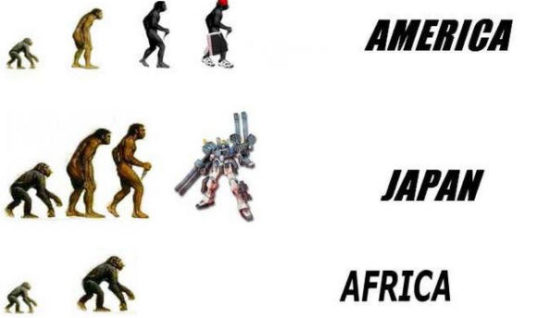 Evolution in some countries