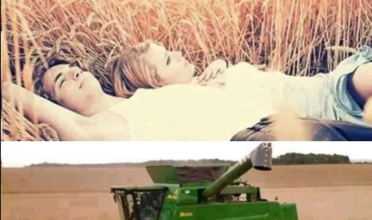 Making Love in Hay