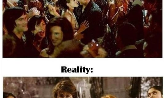 NEW YEAR REALITY