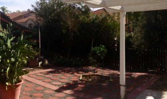 Panaroma in the backyard