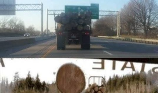 Truck loaded with logs