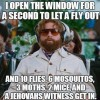 I Open The Window To Let A Fly Out