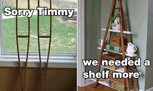 Sorry Timmy