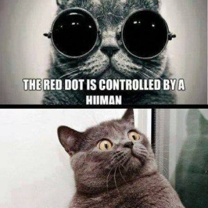 The red dot