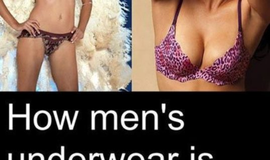 Underwear Man Vs Women
