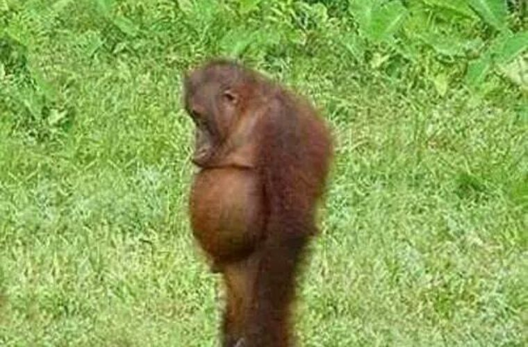 Me In bathing suits