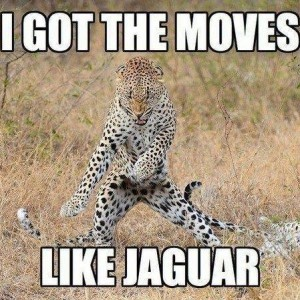 Moves like Jagger Song