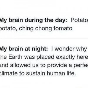 My Brain druing day & Night