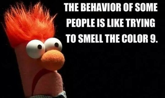 Some people's behavior