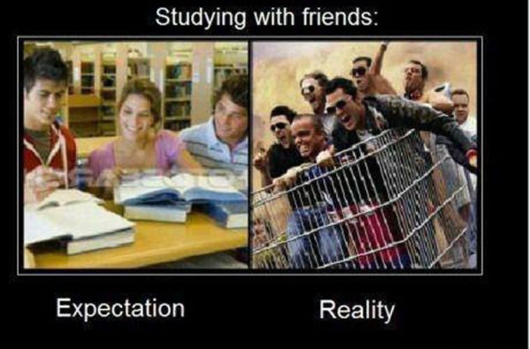 studying with friends funny pictures quotes memes funny images