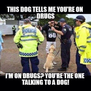 The dog tells me you are on drugs