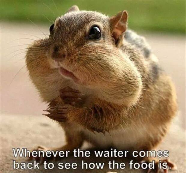 Whenever the waiter comes back