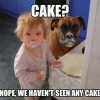 Where Is The Cake