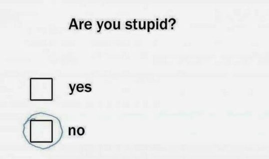 Are you stupid