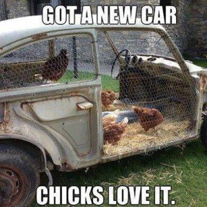 Chicks love my new car
