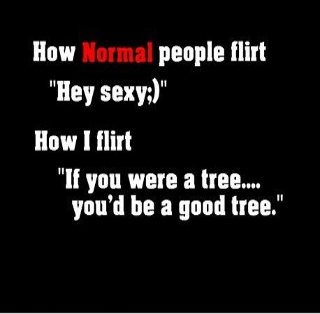 flirting quotes to girls photos funny pictures funny