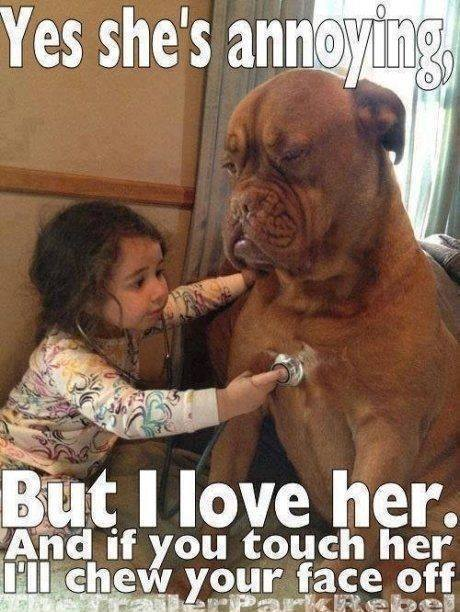 Little Girl and Pet Dog little girl and pet dog funny pictures, quotes, memes, funny
