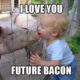 Pigs And Little babies
