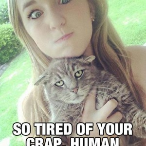 This cat is irritated by humans