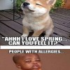 Allergies Meme