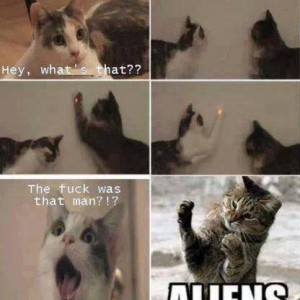 Cats Vs Aliens