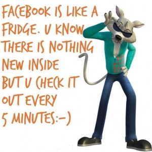 Facebook is like Fridge