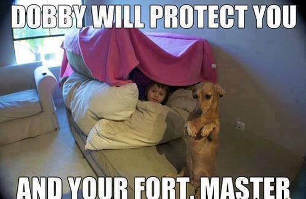 Fort Security Guard Funny Pictures Quotes Memes Funny