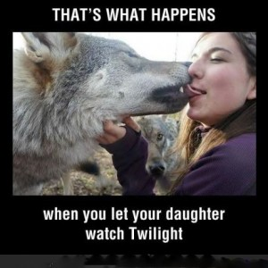 Funny Fan Twilight