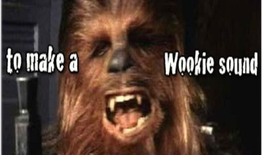 Funny Wookie