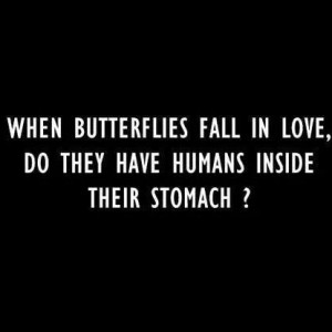 Butterflies in Love