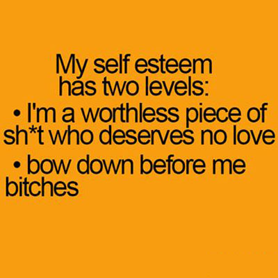 My Self Esteem has 2 levels my self esteem has 2 levels funny pictures, quotes, memes, funny