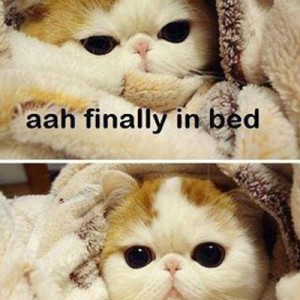 Ahh Finally in bed!