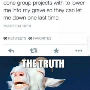 Group Project Partners