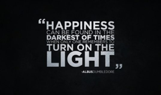 Happyness Quote